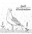 gull ink on the white background vector image