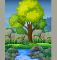 nature scene with river in forest vector image vector image
