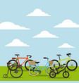 set of the different bicycles in the landscape vector image