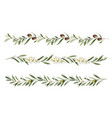 watercolor set borders olive branches vector image