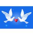 Watercolor soaring pigeons pair vector image vector image