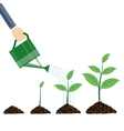 Watering can and plants vector image