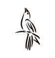 hand drawn bird line silhouette hand drawn vector image vector image