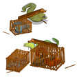 set moray eels caught in wooden cage vector image vector image
