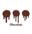 chocolate drip splash set chocolate liquid blot vector image vector image
