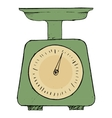 domestic weigh-scales vector image