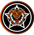 tiger head mascot with shield vector image
