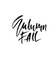 autumn fall modern brush lettering isolated on vector image