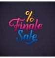 Finale Sale Inscription Calligraphy lettering vector image
