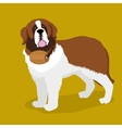 Rescue dog with a keg on his neck cartoon vector image