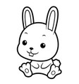 black and white rabbit character sits forward vector image