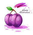 cartoon plum on the grey background vector image