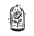 hand drawn witch and magic item rose in a vector image vector image