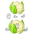 Healthy cauliflower vegetable cartoon character vector image vector image