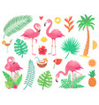 pink flamingo and tropical plants beach palm vector image