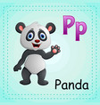 animals alphabet p is for panda vector image vector image