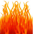 burning fire flames vector image