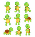cartoon turtle cute kids turtles wild animals vector image