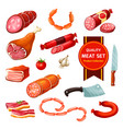 meat and sausages with garlic tomato vector image