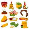 Mexican traditional food with meat avocado tequila vector image