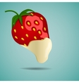 Strawberry in white chocolate vector image