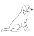 cute dog image outline vector image vector image
