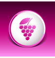 Label logo design winery wine grape premium vector image vector image