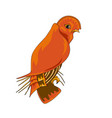 tauraco livingstonii icon vector image vector image