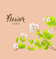 white flower and leave greeting card vector image vector image