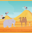 africa desert landscape background with cartoon vector image vector image