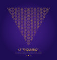 cryptocurrency concept in triangle vector image vector image