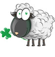 irish shepp cartoon on white background vector image vector image
