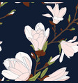 magnolia tree botanical floral seamless pattern vector image