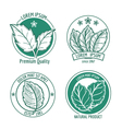 Mint leaf logo icons or menthol spearmint labels