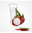 pitahaya juice vector image