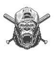 vintage angry gorilla head in cap vector image vector image