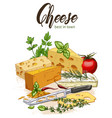 color realistic sketch of cheese vector image vector image