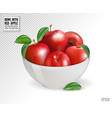 red apples in white bowl isolated on transparent vector image vector image