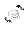 sleeping fox sketch vector image vector image
