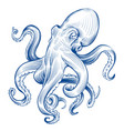 vintage octopus hand drawn squid engraved ocean vector image
