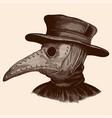 a plague doctor vector image