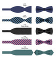 bow ties set in colors with names on white vector image vector image