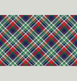 celt pattern check fabric texture vector image