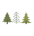 christmas trees isolated on white background vector image vector image