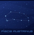 constellation piscis austrinus southern fish vector image