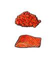 Sea red salmon fish meat fillet caviar set