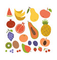 simple cute fruit icon collection set coroful vector image