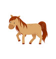 brown horse pony on a white vector image vector image