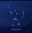 constellation orion hunter night star sky vector image vector image