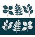 decorative leaves set nature concept silhouette vector image
